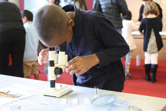 A boy looks down into a microscope.