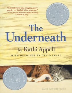 Book cover: The Underneath